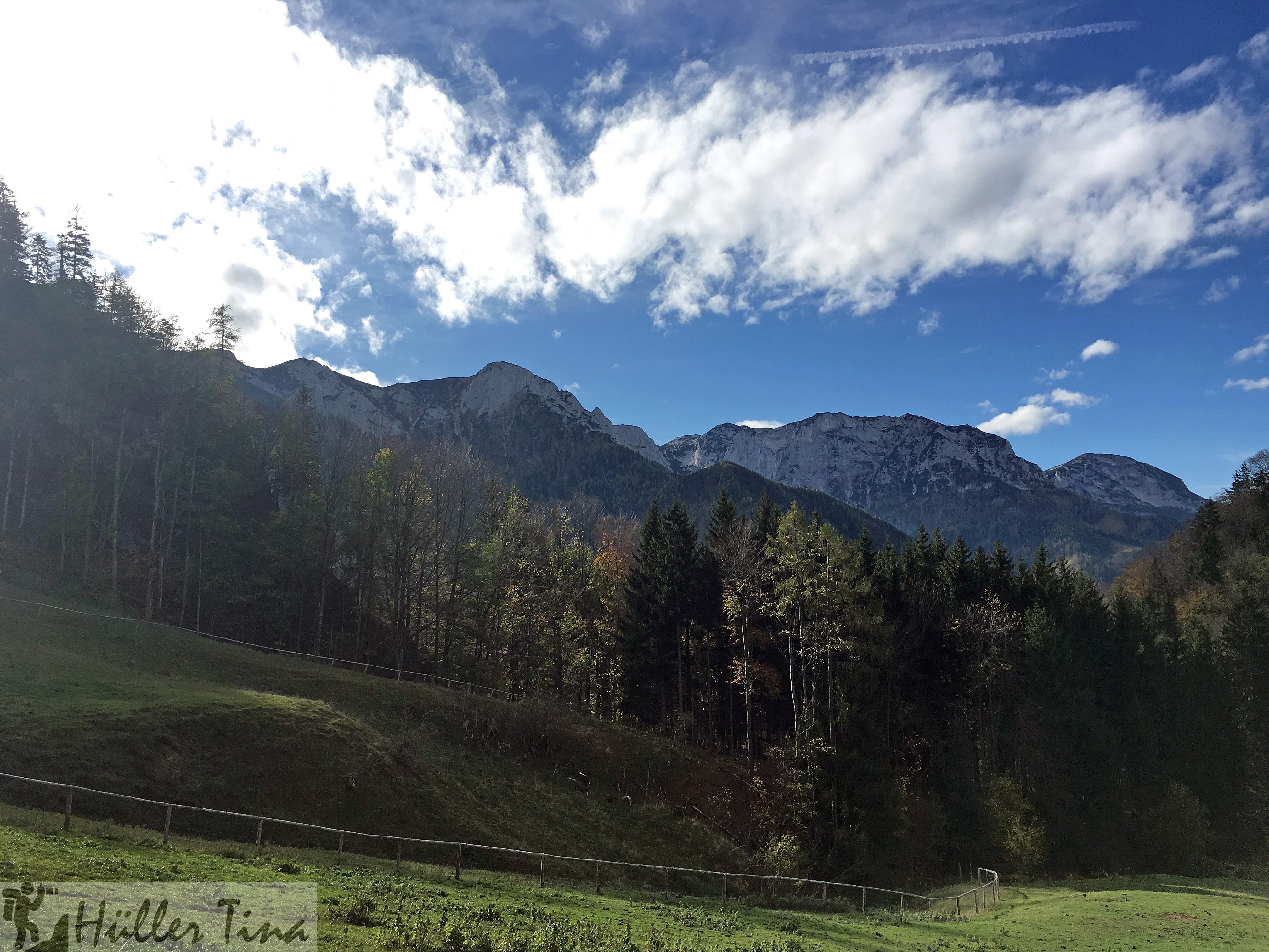 Hochsteinalm – Neukirchen